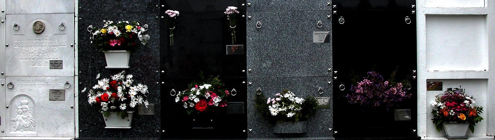 CementerioViveiro_p1